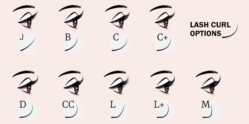 Lash Curl Options