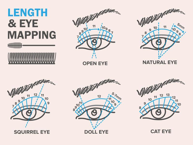 Lash Length & eye mapping